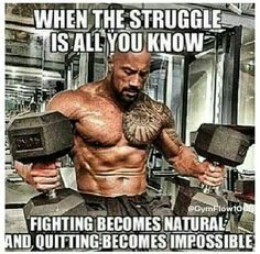 Fighting becomes natural and quitting becomes impossible.