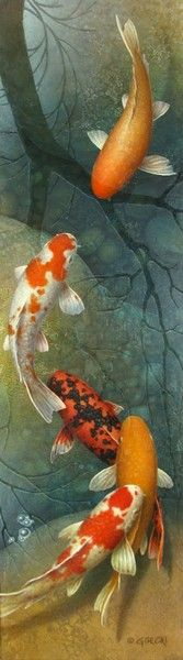 Terry Gilecki is a highly aclaimed painter of the beautiful Koi fish and the surreal world they live in. His paintings and prints are collected world wide. Koi Fish Pond, Fish Ponds, Koi Art, Fish Art, Koi Painting, Fish Paintings, Chinese Painting, Tattoo Pez, Reflection Pictures