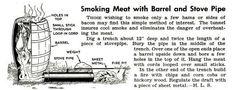 Bushcraft e medicina:           Conservazione cibo: affumicat...
