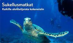 #Finnmatkat Sukellusmatkat