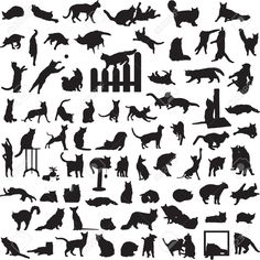 Many Different Cats In A Variety Of Situations Royalty Free Cliparts, Vectors, And Stock Illustration. Image 15260098.