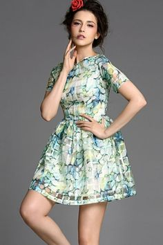 Fined Pleated Lace Dress