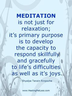 What meditation is for.