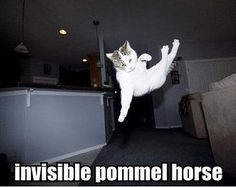 Invisible pommel horse