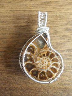 Sterling silver wire wrapped ammonite fossil. $95.00, via Etsy.