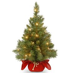 This Majestic Fir Christmas Tree with Battery-Operated Warm White LED Lights from National Tree Company would make a festive Yuletide holiday decoration accent. Features a red cloth base with gold rope tie and a convenient on/off automatic light timer. Pre Lit Christmas Tree, Christmas Light Displays, Tabletop Christmas Tree, Christmas Lights, Christmas Decorations, Holiday Decorating, Country Christmas, Merry Christmas, Christmas Store