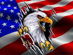 I'm a  proud American! Custom Motorcycle Paint Jobs, Eagle Drawing, Patriotic Pictures, American Flag Eagle, Patriotic Tattoos, Eagle Art, Eagle Tattoos, I Love America, Hippie Art