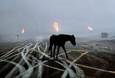 Kuwait | Steve McCurry