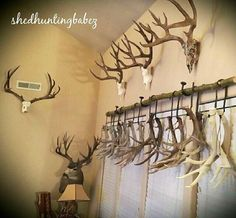 Antlers are woodland-inspired cool rustic pieces that bring coziness. Antlers make accessory holders and natural jewelry hangers. You can add some décor with diy decoration ideas using antler. Deer Hunting Decor, Deer Decor, Hunting Rooms, Decorating With Deer Antlers, Antler Decorations, Diy Decoration, Deer Horns Decor, Cabin Decorating, Deer Antler Crafts