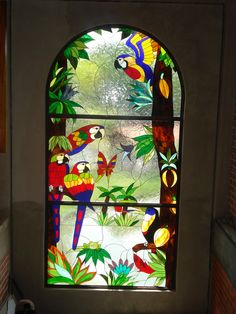 Parrot stained glass panel, Vitrales Artisticos Con color - VITRALES