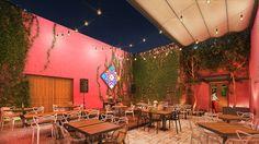 Restauración y rehabilitación de una casa colonial, para contener un restaurante, una terraza bar, un club bar y una tienda de arte de la región; todo esto dentro del Recinto Amurallado de la  ciudad de San Francisco de Campeche, en la calle mas emblemática del Centro Historico, la 59.