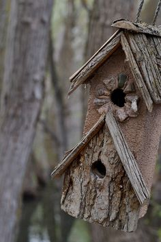 Rustic tree bark birdhouse