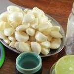 Eliminar cheiro de cebola ou alho num recipiente de plástico