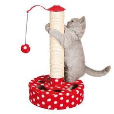 let's play kitty ! Arbre à chat chaton http://www.zoomalia.com/animalerie/poteau-de-jeu-p-11163-c-906.html