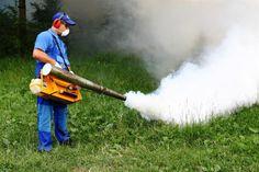 Dezinsectie Bucuresti, o masura de protectie Serviciile de dezinsectie Bucuresti ne ajuta sa scapam de o serie de insecte daunatoare, care sunt purtatoare de agenti patogeni si care pot transmite diferite boli, cum ar fi dizenteria, holera, toxiinfectiile alimentare, tetanosul sau febra tifoida. Este o masura de protectie pentru a ne feri...  https://scriuceva.ro/dezinsectie-bucuresti-masura-de-protectie/