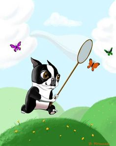 Boston terrier art print bt chasing butterflies. $18.00, via Etsy.