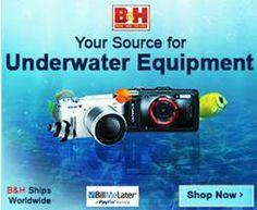 Underwater Photo  Video Equipment - http://www.bhphotovideo.com/c/browse/Underwater-Equipment/ci/11585/N/4294551294/bi/19065/kbid/10661
