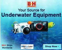 Underwater Photo  Video Equipment - http://www.bhphotovideo.com/c/browse/Underwater-Equipment/ci/11585/N/4294551294/bi/19065/kbid/10661