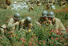 Liri Valley, on the road to Rome, 1944 Read more: World War II in Color: The Italian Campaign and the Road to Rome, Military Photos, Military History, Italian Campaign, Colorized Photos, War Photography, United States Army, History Photos, Us Army, World War Ii