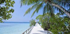 The dreamy Makunudu Island, Maldives @MakunuduIsland  - Review http://www.luxurytraveldiary.com/2015/09/makunudu-island-maldives-review/…