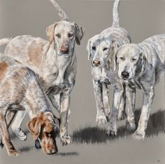 Vicky Palmer Beaufort 2016, No.2 oil on canvas 27.5 x 27.5 ins (70 x 70 cms) £2,800  #art #artist #painting #painter #farm #farmanimals #hounds #hunting #buyart #interiordesign #countrylife #country #countryside #pigs #dogs #cows #foxandhound