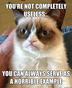 Grumpy cat, grumpy cat meme, grumpy cat quotes, funny grumpy cat quotes, grumpy cat jokes …For the funniest quotes and hilarious pictures visit www.bestfunnyjokes4u.com