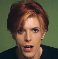 David Bowie by Schapiro
