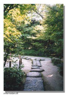 The Tsubo-en main garden paths and roji