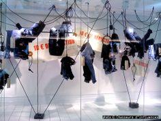 hang in there, pinned by Ton van der Veer