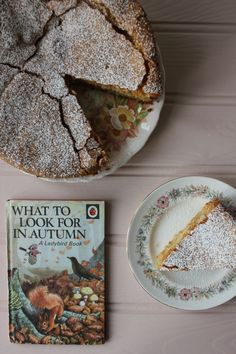 Everything Looks Rosie: Spiced Apple Cake