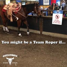 The picture says it all... #TeamRoperTuesday #YouMightBeATeamRoperIf