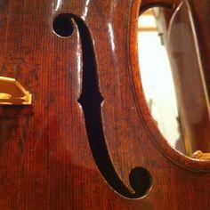 P Zanetto viola, 1564