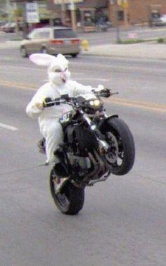 rabbit suit rider poppin' a motorcycle wheelie