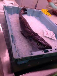 Esto es un pez. No me gusta el pescado. El pescado en el mercado central olia tan mal! Me tape la nariz todo el tiempo!