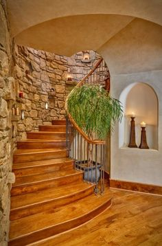 We Welcome you to our latest collection of 35 Amazing Spiral Staircase Design Inspiration. Check out and grab the best design for your house. Stair Wall Decor, Stairs Canopy, Building Stairs, Staircase Remodel, Stairs Architecture, Wooden Stairs, Staircase Design, Staircase Diy, Curved Staircase