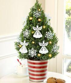 Weihnachtsbaum im Topf festlich dekoriert