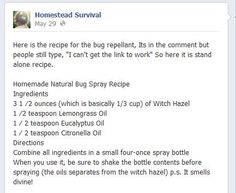 Home made Bug Spray