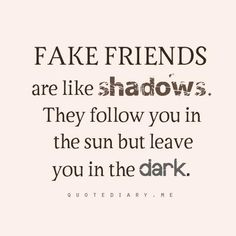 """""""Fake friends are like shadows. They follow you in the sun but leave you in the dark."""""""