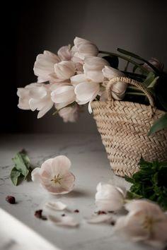 Романтические Свечи, Мечты, Фиолетовые Цветы, Цветочные Корзины, Красивые Цветы, Необычные Цветы, Пастельные Цвета, Корзины