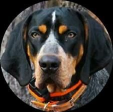 antwal5261 on eBay Christmas Svg, Dog Treats, The Unit, Ebay, Doggie Treats