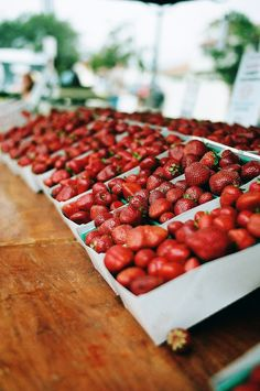 Fresh Strawberries, NYC has them at the Union Square Farmer's Market