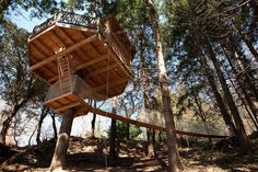 21 Amazing Treehouse Accommodations Around the World