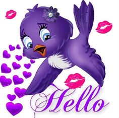 Hello little purple bird