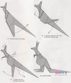 origami kangaroo 5