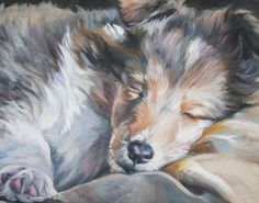 Shetland Sheepdog sheltie art print CANVAS print of LA Shepard painting 11x14 dog art