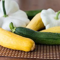 The common freezing process when freezing fresh vegetables such as summer squash is to slice the vegetables and blanch them before freezing. Blanching is important before. Freezing Vegetables, Frozen Vegetables, Canning Vegetables, Veggies, Yellow Squash Recipes, Yellow Squash And Zucchini, Freezing Yellow Squash, Crookneck Squash Recipes, How To Cook Squash