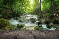 Wall Mural forest waterfall