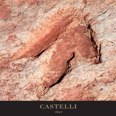 27th June - On this day: University students discover three toed dinosaur tracks in Denali National Park, Alaska 2005   (Source: Castelli 2018 corporate diary/2018 diaries feature facts every day)
