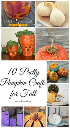 Ten pretty pumpkin crafts you can make this fall season for your home. DIY pretty pumpkins for fall, Halloween and home decor. Easy Crafts For Kids, Cute Crafts, Fall Crafts, Holiday Crafts, Wooden Pumpkins, Painted Pumpkins, Diy Pumpkin, Pumpkin Crafts, Glitter Pumpkins