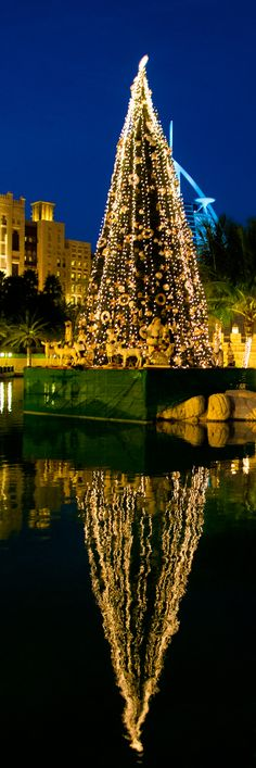 christmas time in Dubai by Edith ernst